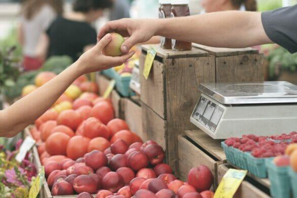 A man handing a woman an apple at a fruit stand