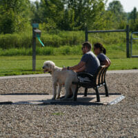A couple sitting on a bench, petting their dog