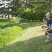Father and son crouched by lake, throwing pine cones
