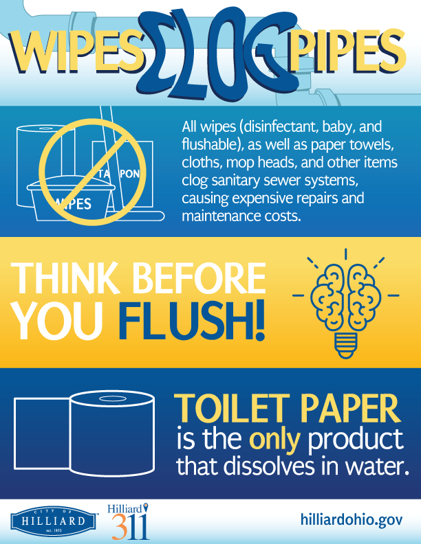 flushing graphic