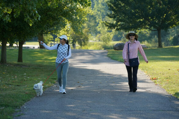 Two women walking a dog in the park